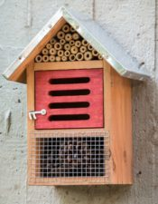 insect-hotel-969094_1920